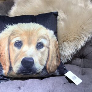 labrador velvet cushion with navy background