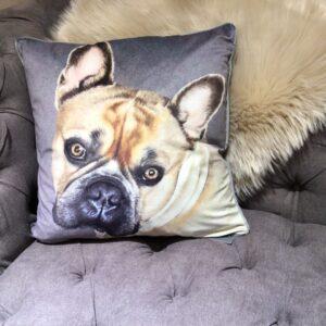 French Bulldog print velvet cushion with a grey background