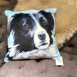 Black and White Border Collie Feather Filled Cushion with light blue backing